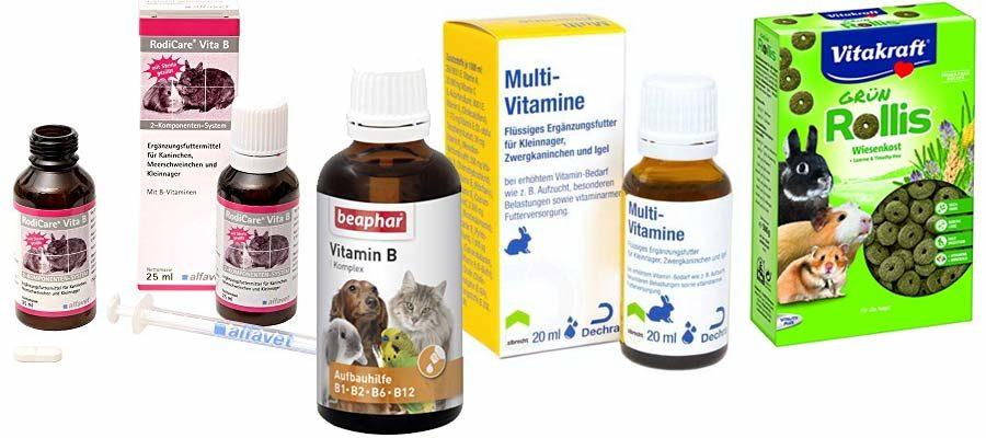 Vitamine für Zwergkaninchen