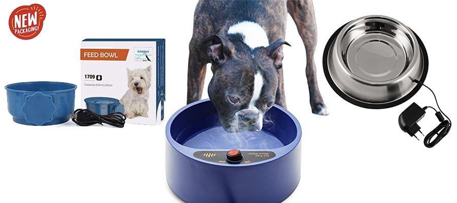 beheizte Wassernäpfe für Hunde