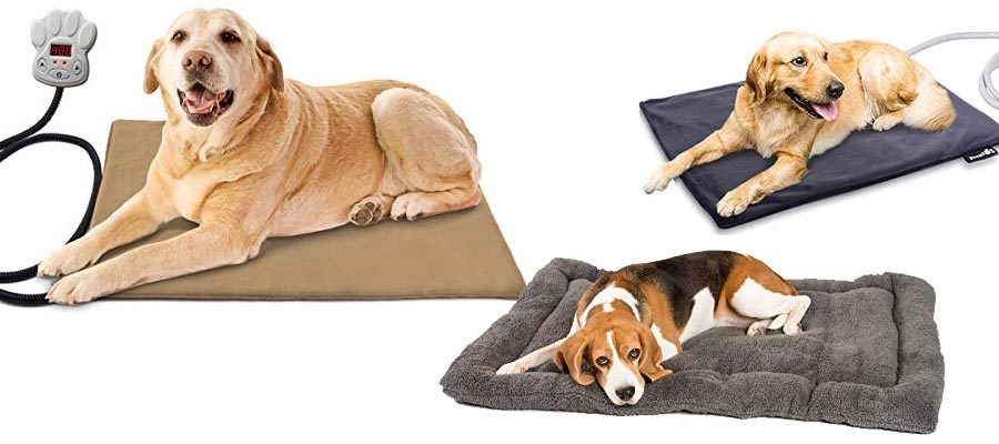 Wärmematten Hunde