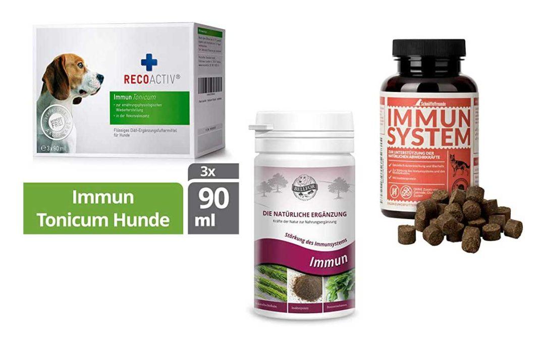 Stärkung des Immunsystems