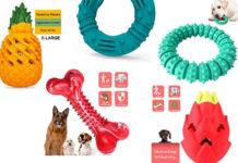 unzerstörbare Spielzeug für Hunde